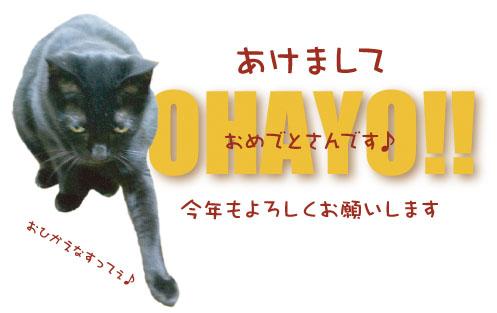 ohayo.jpg